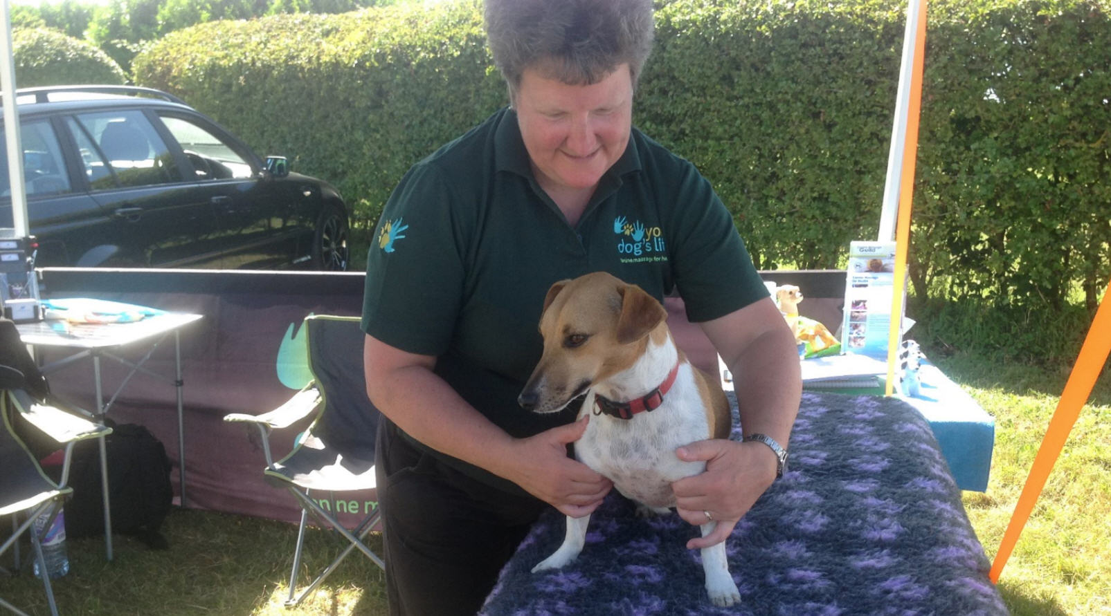 your-dogs-life-uka-colmworth-exhibition-03